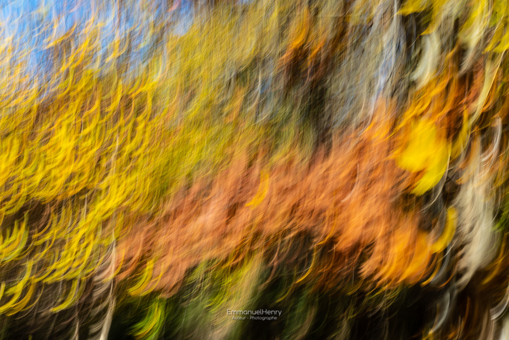 Artifice d'Automne - 03