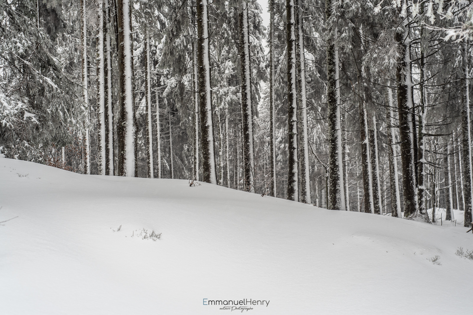 Jour Blanc - 08