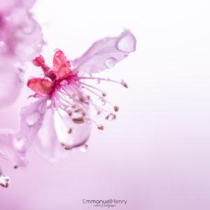 Perles Nature - 01