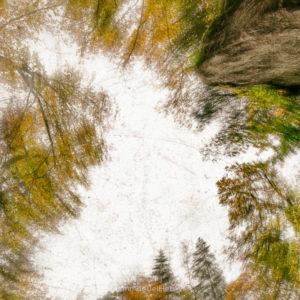 Vertiges d'automne